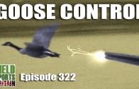 Fieldsports Britain – Goose Control