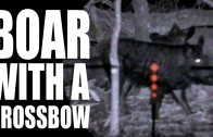 Hunting Boar with a Crossbow