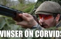 Winser on Corvids