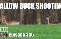 Fieldsports Britain – Fallow Buck Shooting