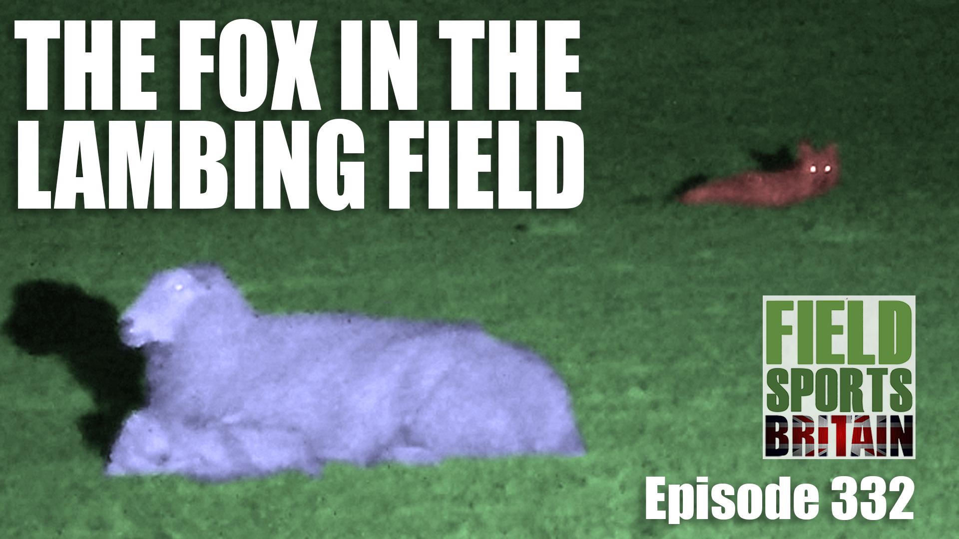 fox and lamb4