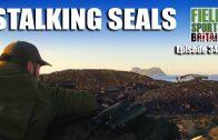 Fieldsports Britain – Stalking Seals