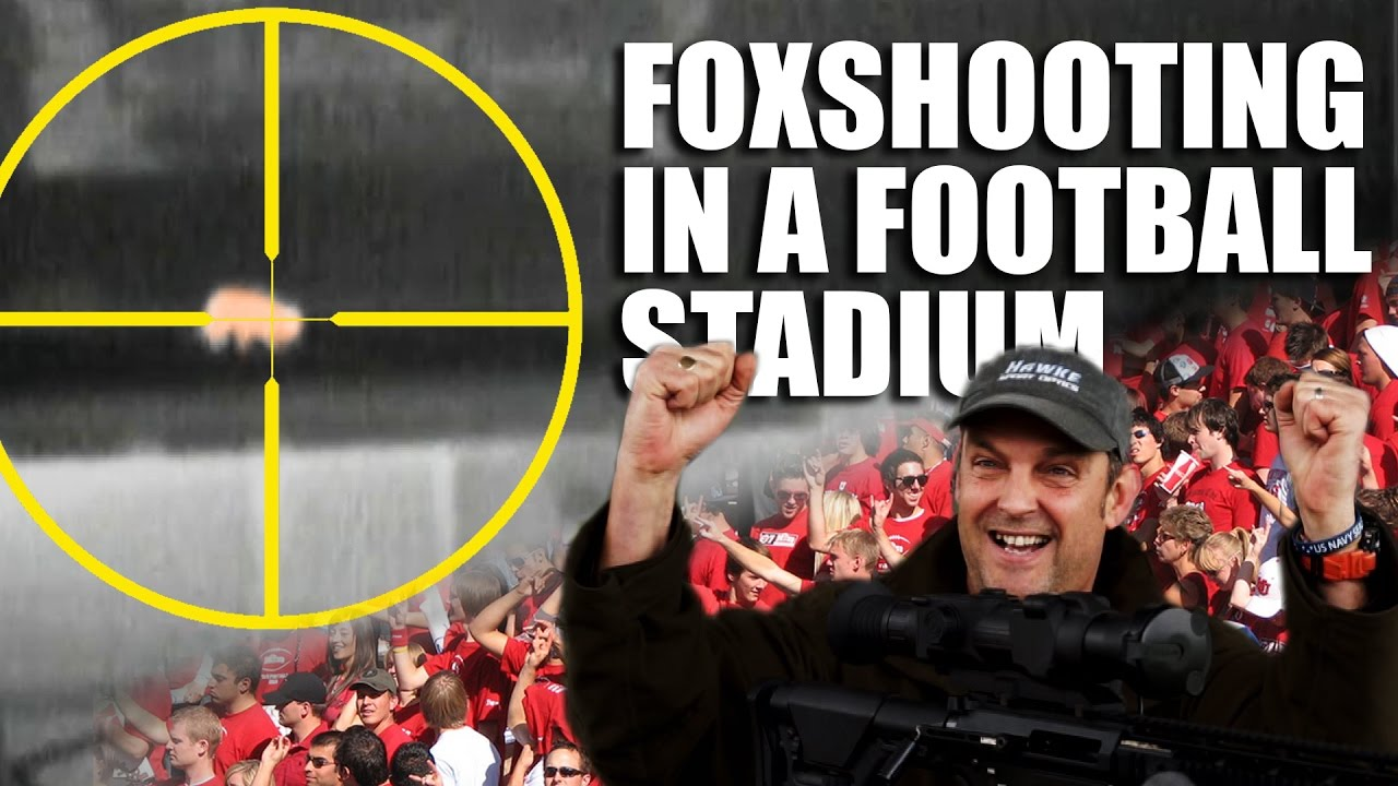 Foxshooting in a Football Stadium | Fieldsports Channel