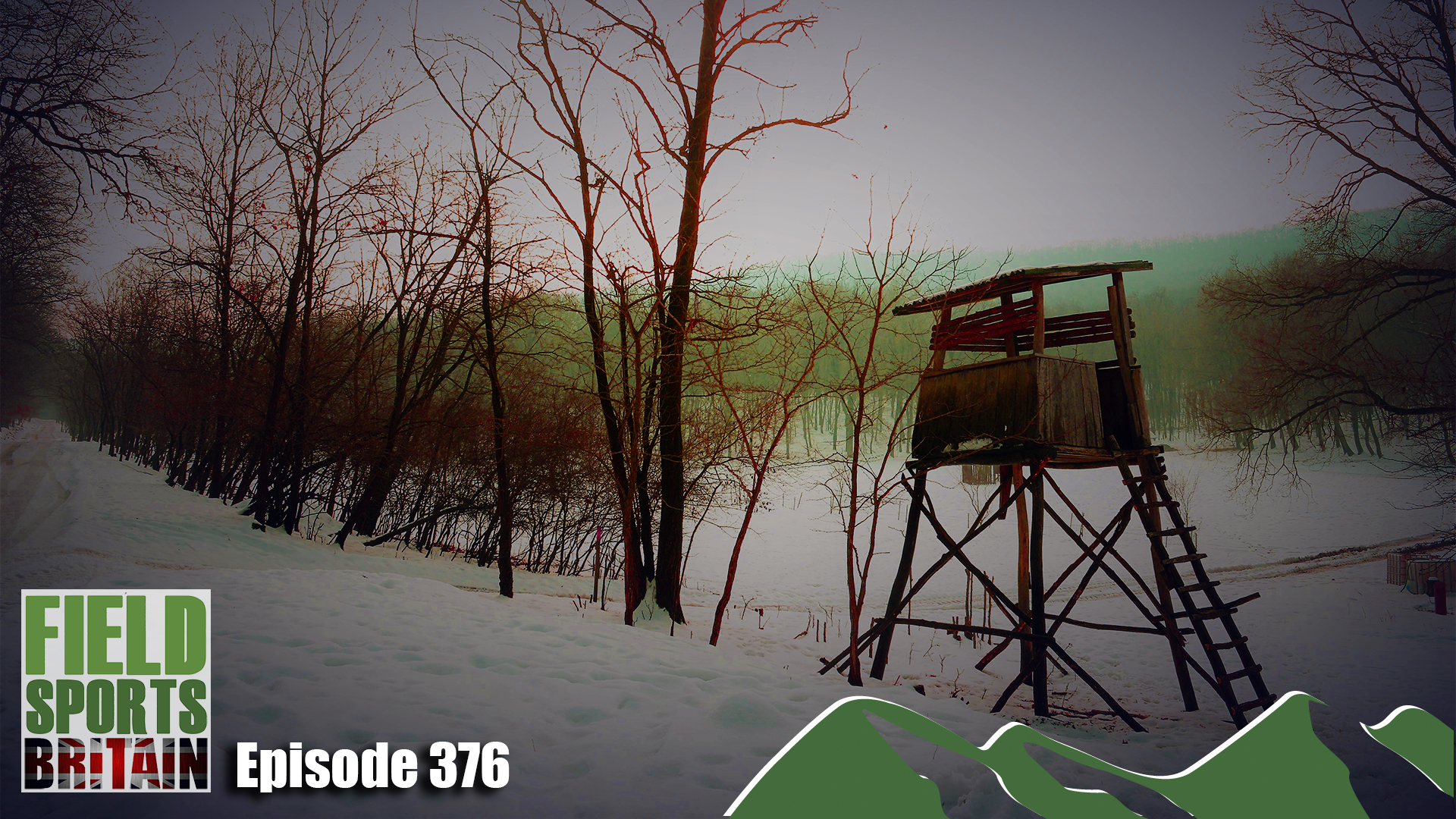 e376-preview-image