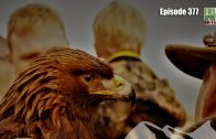 Fieldsports Britain – Riding on the Back of an Eagle
