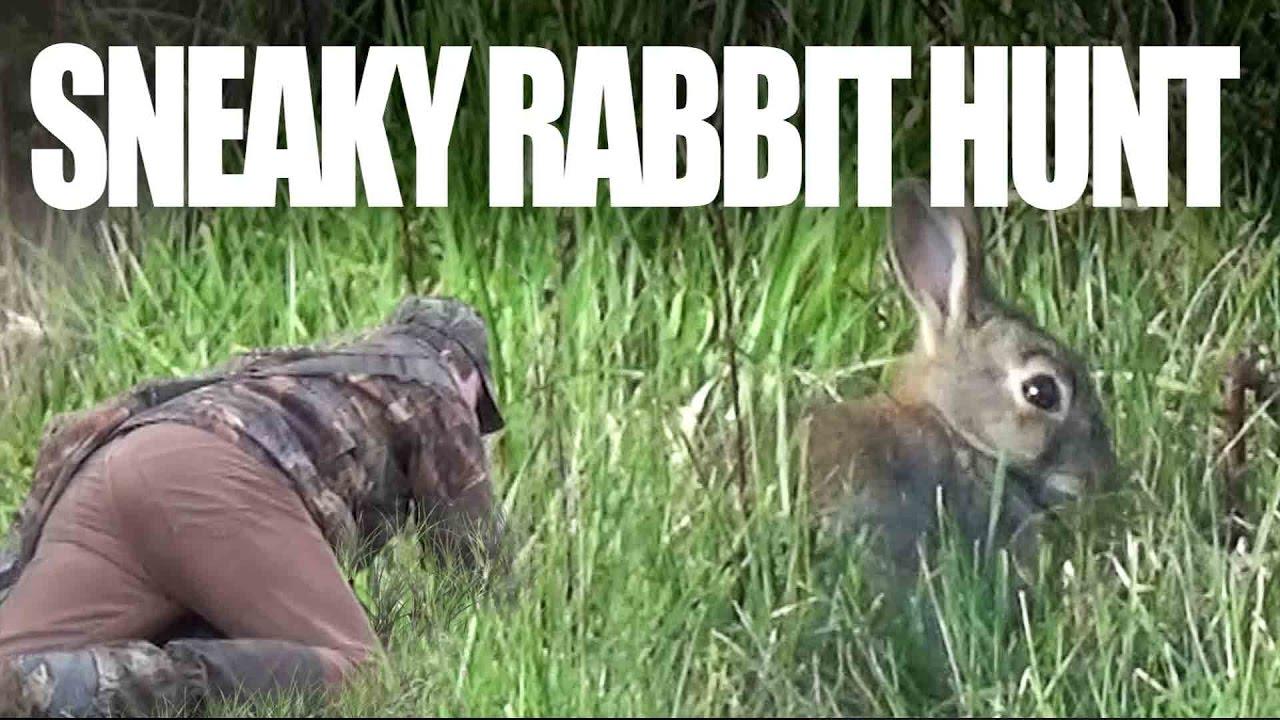 Sneaky-Rabbit-Hunt