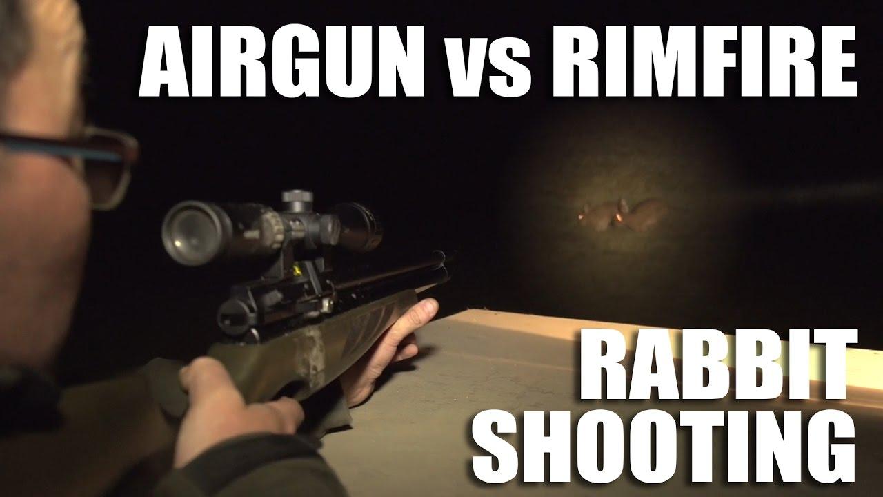 Airgun vs Rimfire