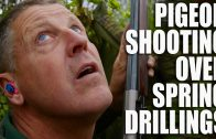 Pigeon shooting over spring drillings