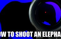 How to Shoot an Elephant