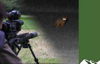Assault Rifle Foxshooting in Essex
