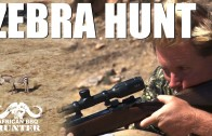 African BBQ Hunter – mountain zebra hunt