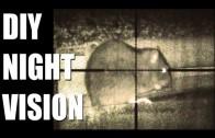 Fieldsports Britain – DIY night vision + flying hawks on pheasants (episode 163)