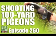Fieldsports Britain – Shooting 100-yard Pigeons