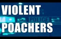 Fieldsports Britain – Violent poachers, Tackle & Gun Show, rifle/scope combos   (episode 151)