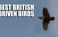 Best British Driven Bird Shooting