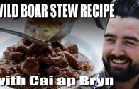 Wild boar stew recipe