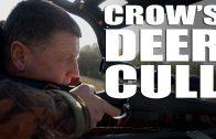 Crow's Deer Cull