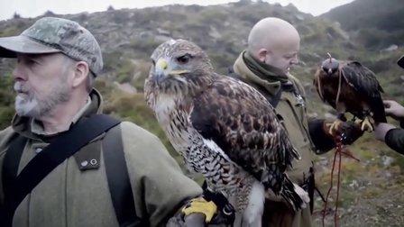 獵奇 第九十七集 苏格兰高地的猎鹰人