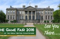 gamefair