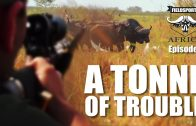 A Tonne of Trouble – Fieldsports Africa, episode 2