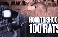 How to Shoot 100 Rats