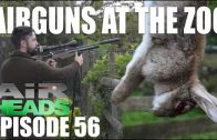 Airguns at the Zoo – AirHeads, episode 56