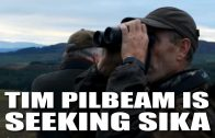Tim Pilbeam is Seeking Sika