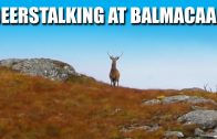 Deerstalking at Balmacaan Estate, Inverness-shire