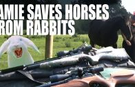 Jamie Saves Horses From Rabbits