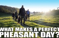 What makes a perfect pheasant shoot day?