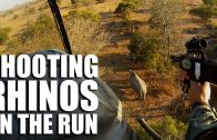 Shooting Rhinos on the Run