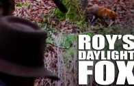 Foxshooting with Roy Lupton