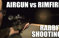 Airgun vs Rimfire