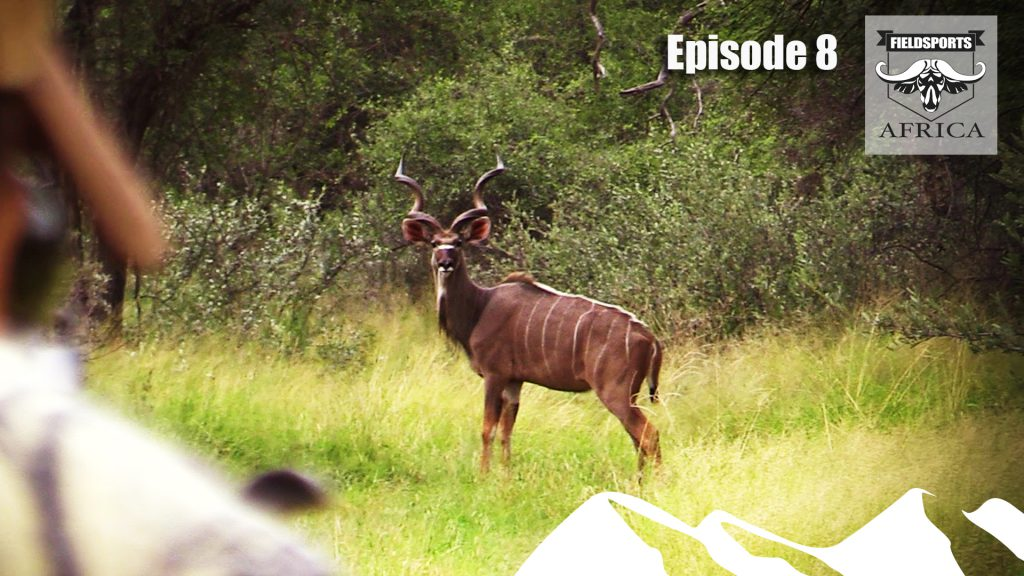 Hunting Kudu – Fieldsports Africa, episode 8