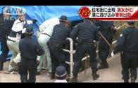 Wild boar bites Japanese pensioners