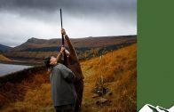 High Pheasants: Upperwood Estate