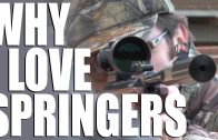Why I love spring air rifles + Walther LGV review