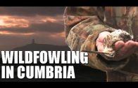 Wildfowling in Cumbria