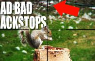Don't use a squirrel as a backstop
