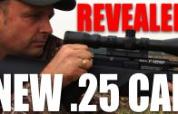 First look: BSA's new .25-calibre R10 airgun