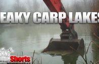 Leaky carp lakes