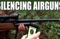 Silencing Airguns