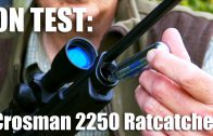 Crosman 2250 Ratcatcher airgun on test