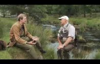 Prince Charles's Trout