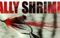 Ally Gowans ties his Ally Shrimp – flytying