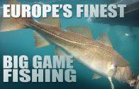 Cod in the Norwegian Sea – Big Game Fishing