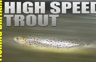 Dry Fly fishing in the Midlands