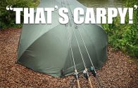 """That's Carpy"" – How to be a hard core carp angler"