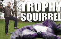 Trophy Squirrel