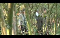Pheasant shooting at Plumpton College in Sussex